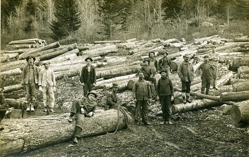 No-Logging On Bowen Island